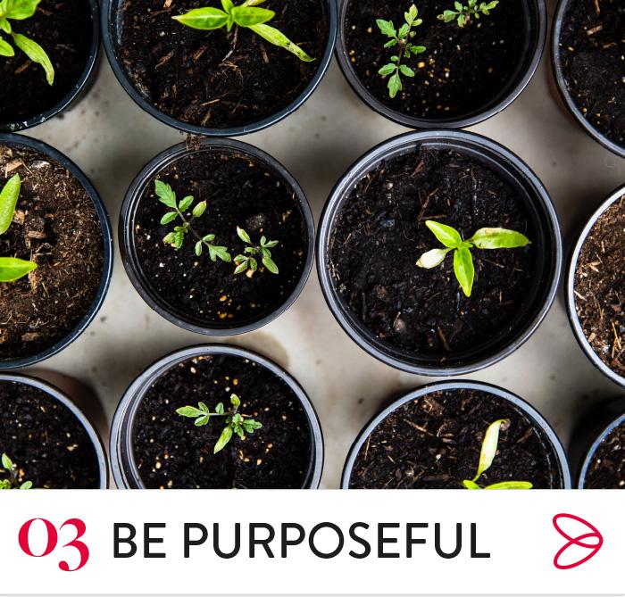 BePurposeful.jpg