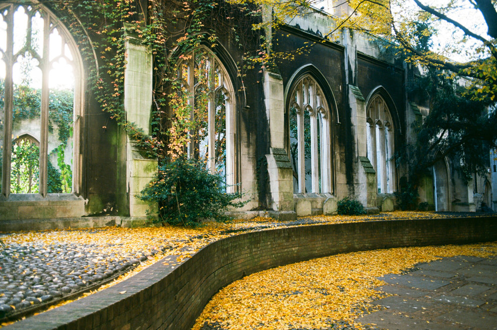 St Dunstan-in-the-East. Kodak Ektar 100.