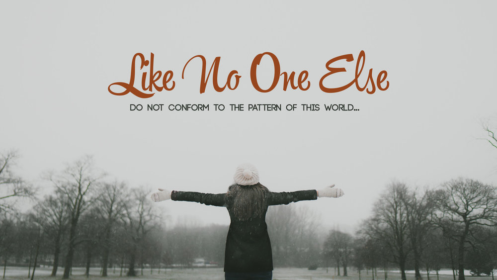 Like No One Else.jpg