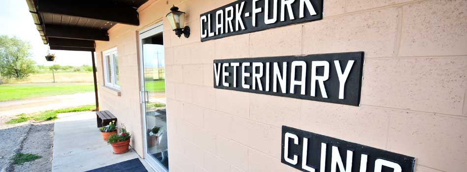 Our Practice - The Clark Fork Veterinary Clinic has been serving the Deer Lodge Valley since 1961. We are a full service mixed animal practice providing dental, medical, and surgical care. We work with all species and strive to provide the best health care management for any animal we treat – whether our patient is a beloved family pet or a ranch animal.We offer a combination of in-house testing and external laboratory diagnostics. Our facilities include small and large animal treatment areas, x-ray, a small animal surgery suite, indoor boarding kennels, a laboratory, and a pharmacy. We also offer ambulatory services and work with referral practices in the area to provide the best possible care for our patients.Thank you for taking the time to read about us and our services. Please let us know if there is a way we can better serve your veterinary health care needs. We sincerely care about our patients and their owners. Stop by to see us and experience authentic, Montana hospitality and care. We would love to help your pet have a happy and healthy life with you!