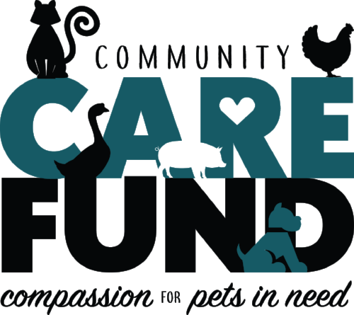 Care fund logo.png