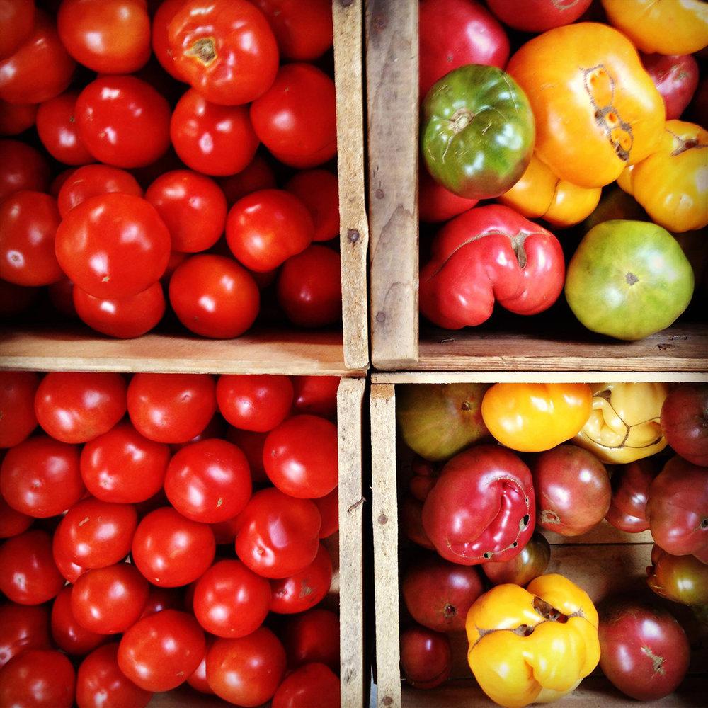 harvest7.jpg