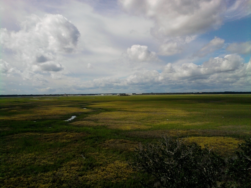 Stubbs - marsh view-2.jpg