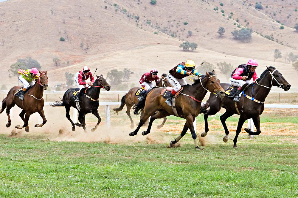Tambo_valley_races_2006_edit.jpg
