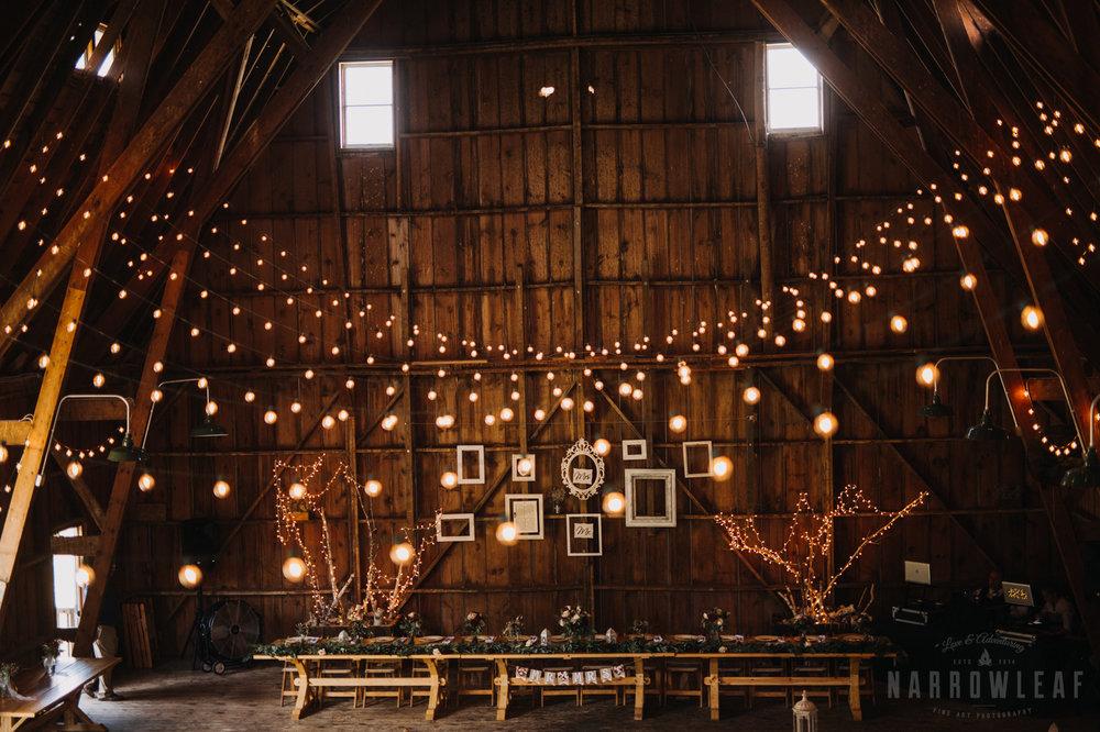 wedding-photography-dellwood-barns-mn-7290.jpg