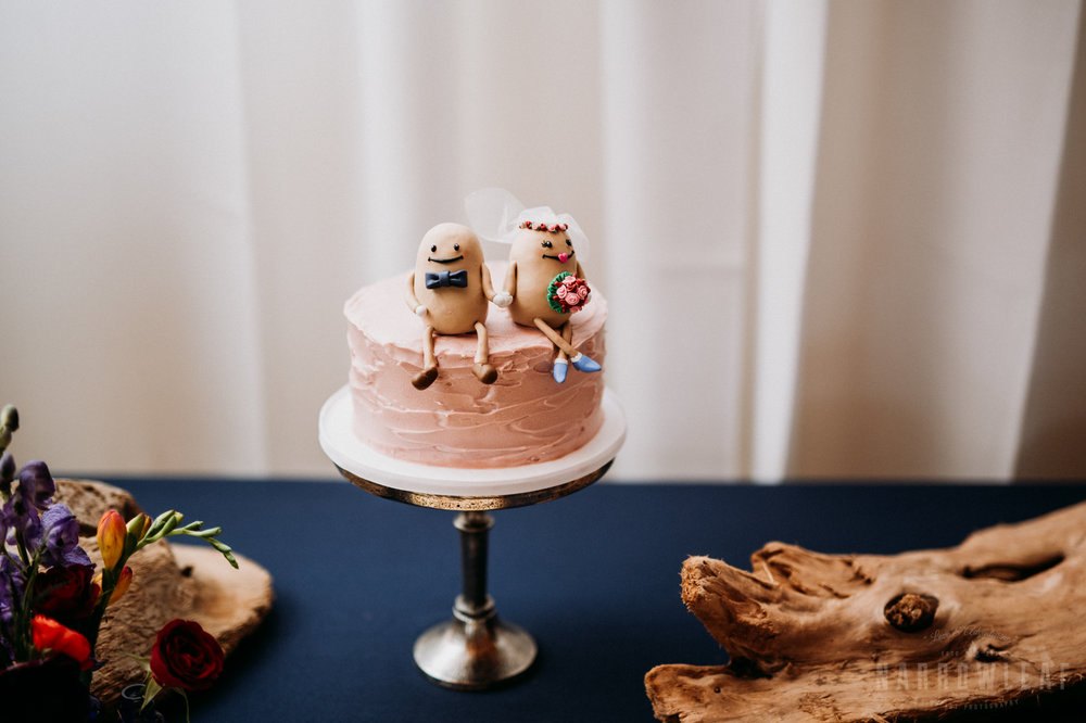 bayfield-wi-lake-superior-wedding-reception-blue-cake-13.jpg