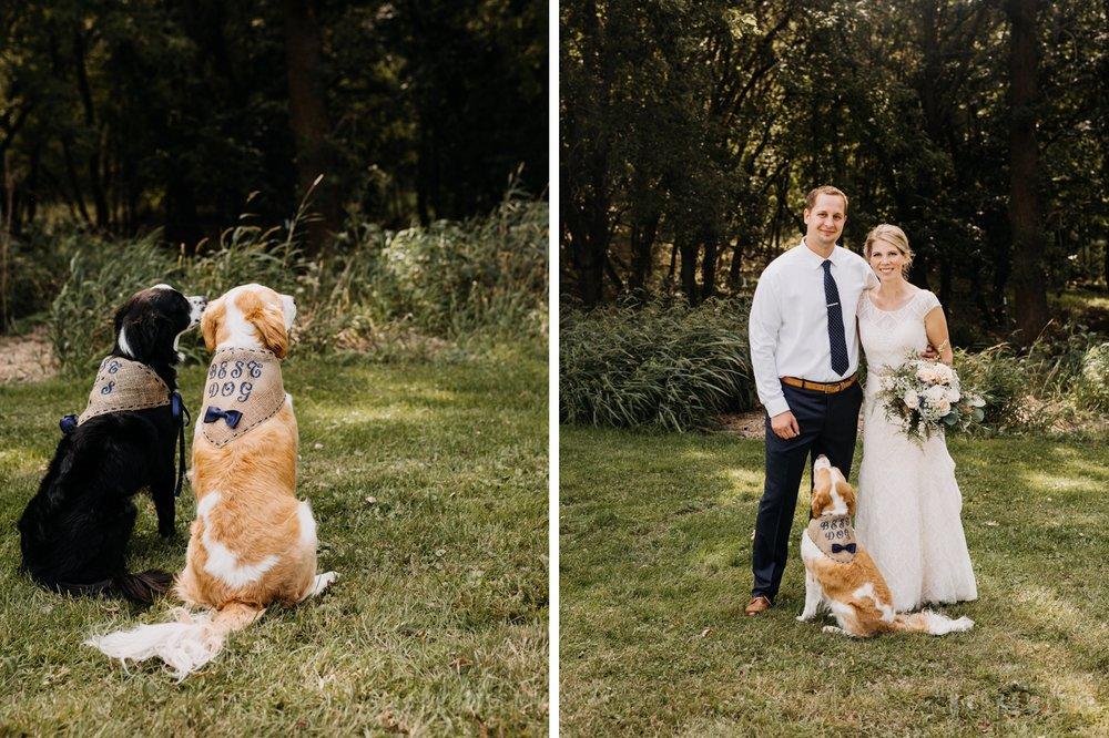 bride-groom-best-dog-ring-bearer-puppy.jpg