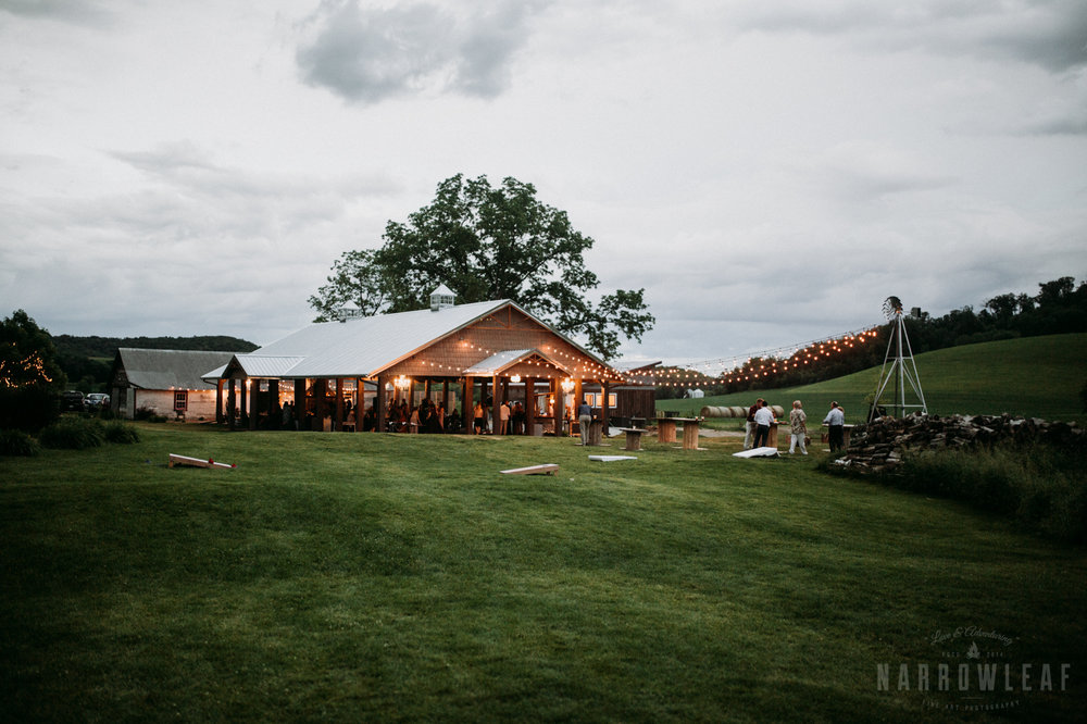outdoor-cafe-lights-wedding-reception-the-hidden-meadow-and-barn-pepin-wi-4.jpg
