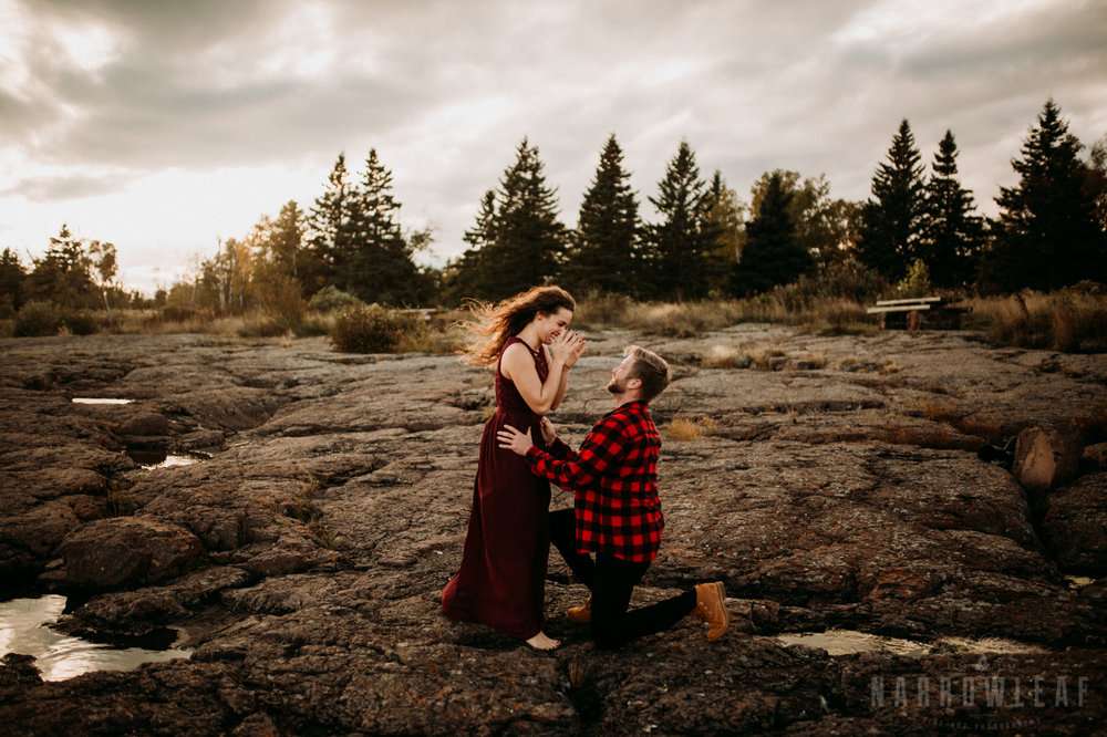 Surprise Proposal on the North Shore