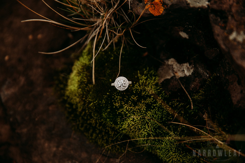 wild-adventure-engagement-photos-gooseberry-falls-two-harbors-mn-NarrowLeaf-Photography-71.jpg