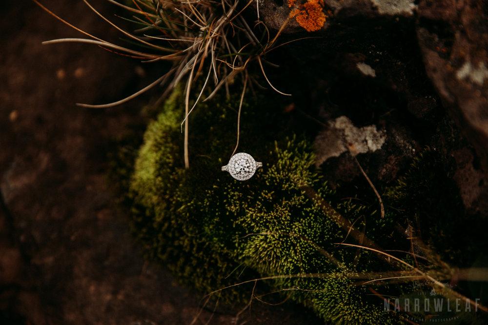 wild-adventure-engagement-photos-gooseberry-falls-two-harbors-mn-NarrowLeaf-Photography-71.jpg
