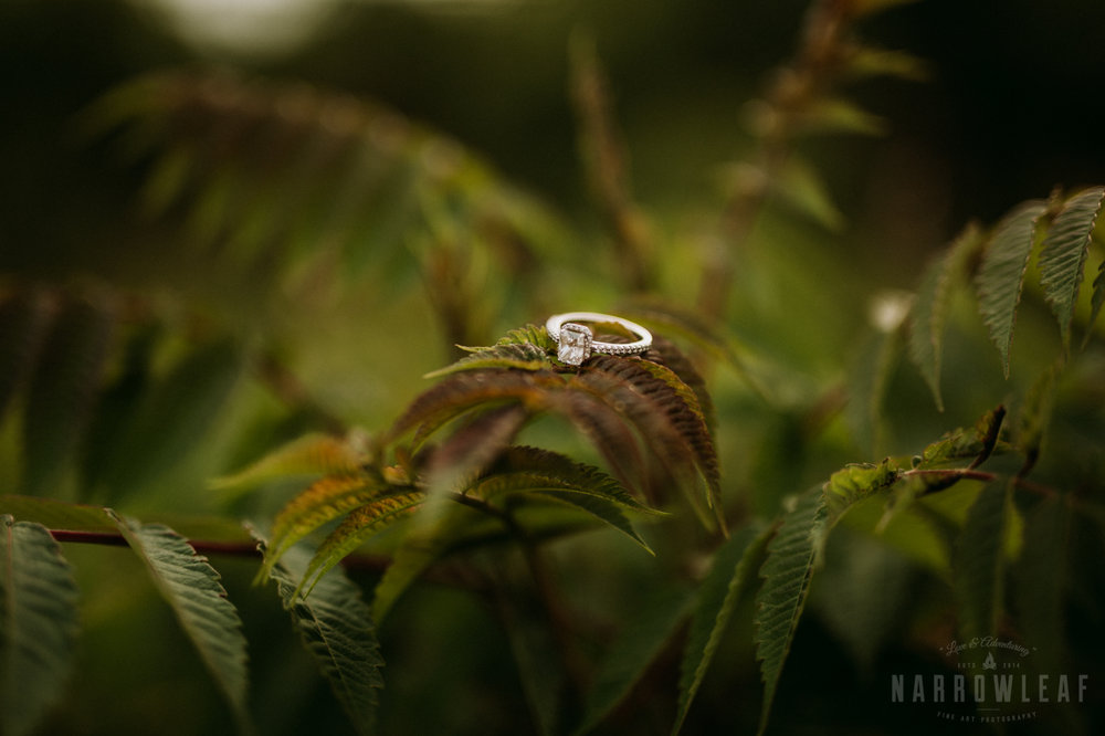 summer-engagement-photos-frontenac-mn-NarrowLeaf_Love_&_Adventure_Photography-14.jpg