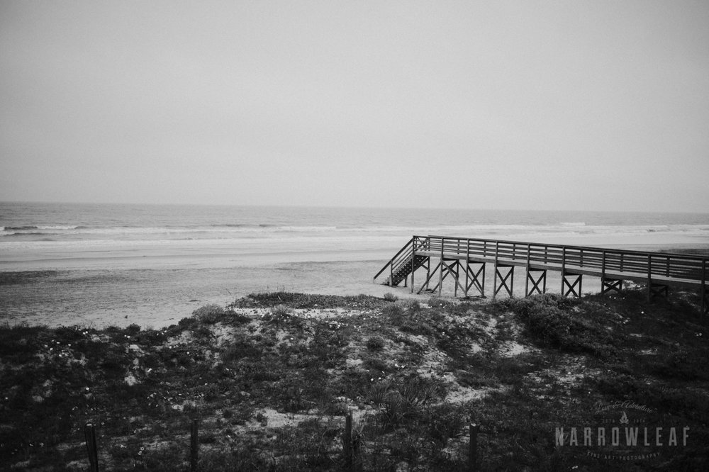 south-carolina-folly-beach-destination-wedding-NarrowLeaf_Love_&_Adventure_Photography-2872.jpg