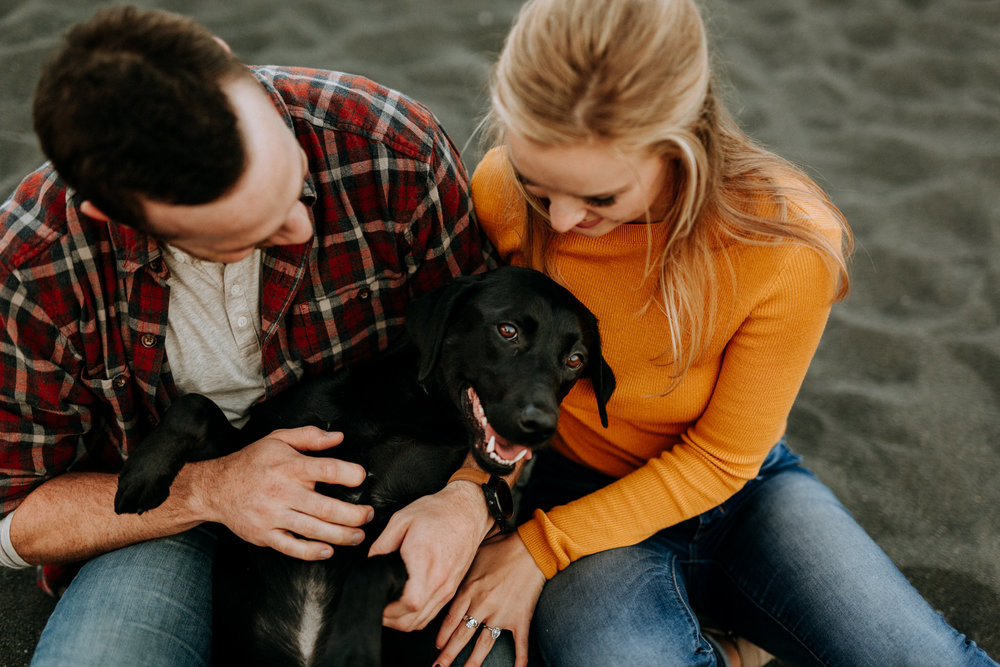 Engagement photos with dogs on beach in Minnesota