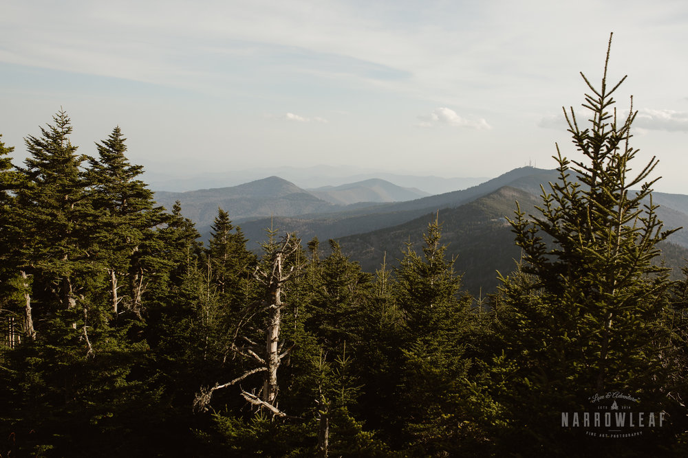 Blue-Ridge-mountains-North-Carolina-elopement-photographer-Narrowleaf_Love_and_Adventure_Photography-0262.jpg