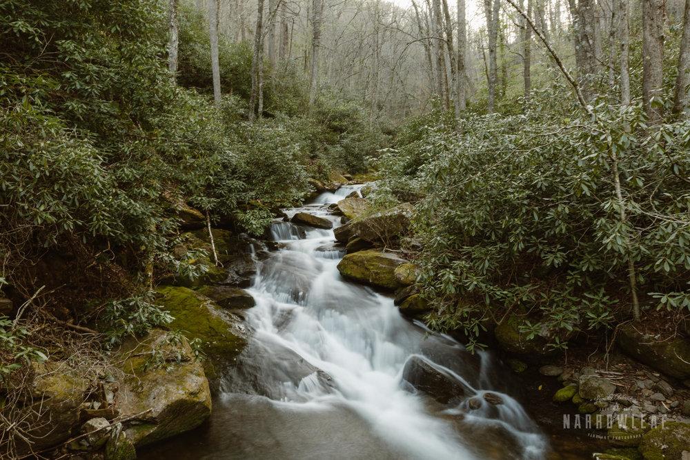 Blue-Ridge-mountains-North-Carolina-elopement-photographer-Narrowleaf_Love_and_Adventure_Photography-0343.jpg