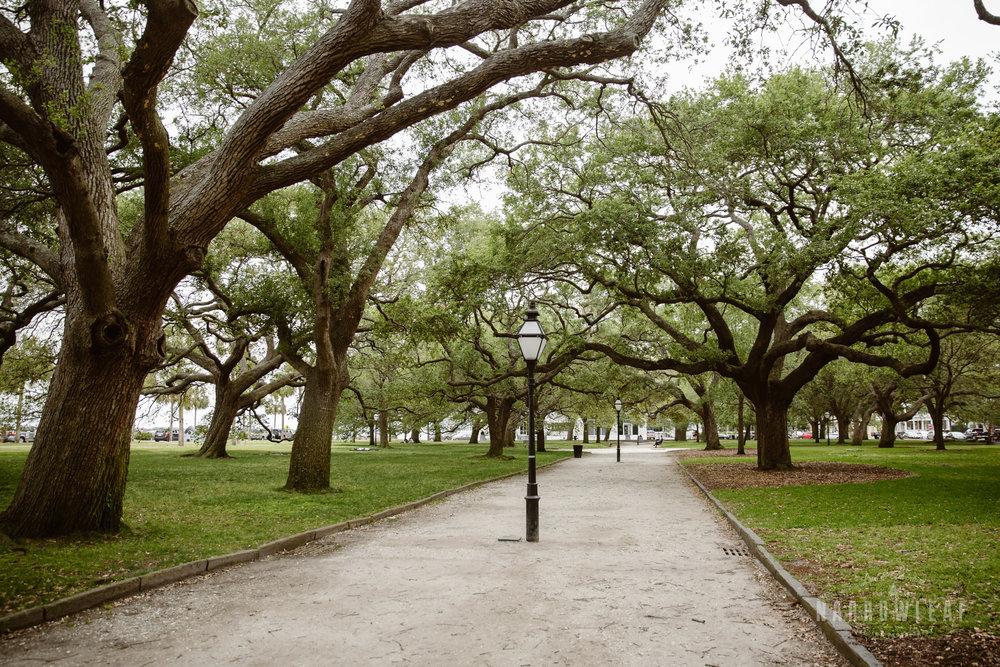 Charleston-South-Carolina-elopement-photographer-Yorktown-Narrowleaf_Love_and_Adventure_Photography-1103.jpg