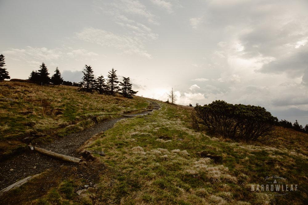 Hiking-Big-Bald-Mountain-Appalachian-Trail-in-Tennessee-Narrowleaf_Love_and_Adventure_Photography-3262.jpg