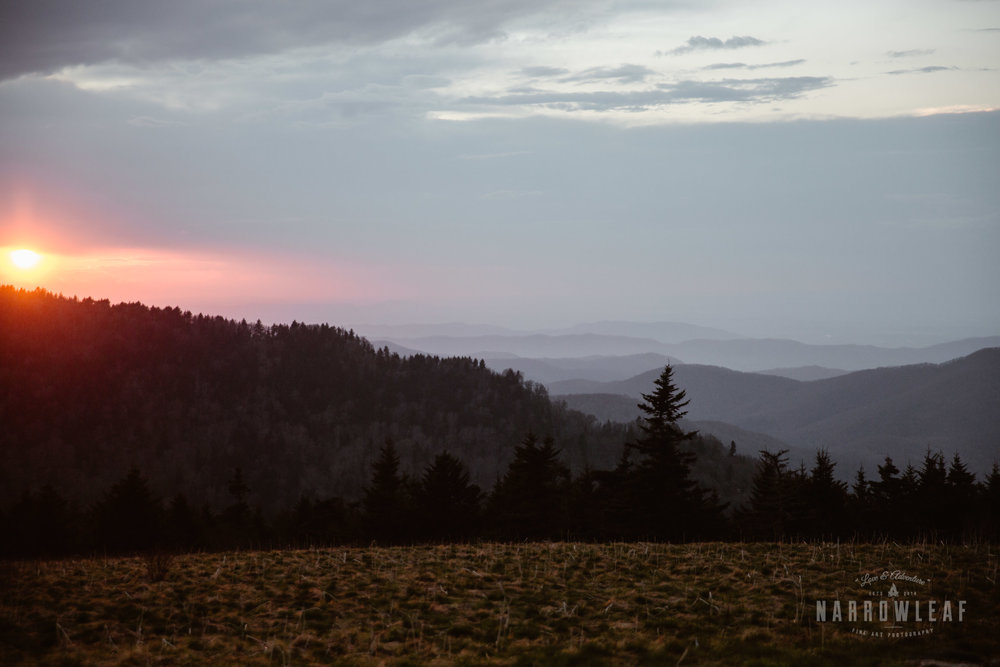 Hiking-Big-Bald-Mountain-Appalachian-Trail-in-Tennessee-Narrowleaf_Love_and_Adventure_Photography-3394.jpg