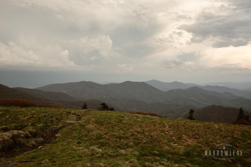 Hiking-Big-Bald-Mountain-Appalachian-Trail-in-Tennessee-Narrowleaf_Love_and_Adventure_Photography-3384.jpg