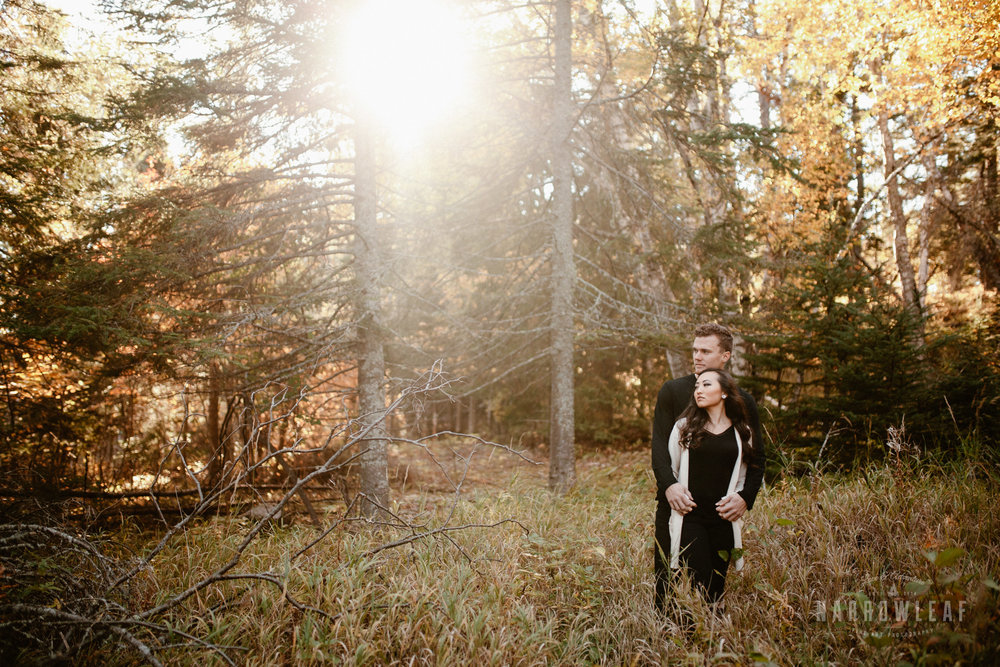 Gooseberry-falls-state-park-minnesota-north-shore-engagement-Narrowleaf_Love_and_Adventure_Photography-2.jpg