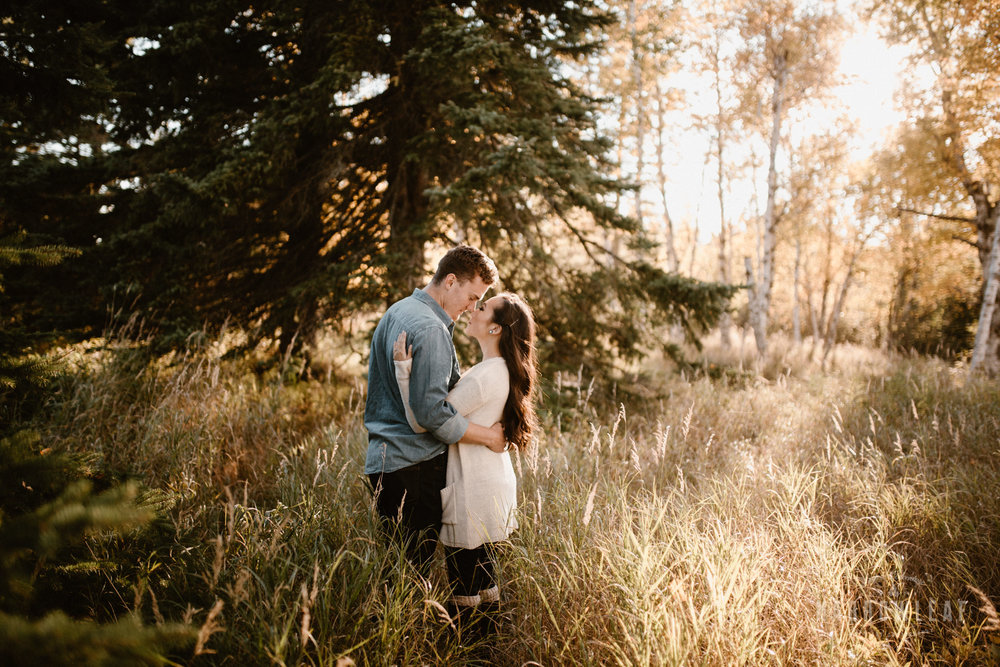 Gooseberry-falls-state-park-minnesota-north-shore-engagement-Narrowleaf_Love_and_Adventure_Photography-9188.jpg