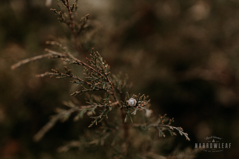 wisconsin-engagement-photographer-Narrowleaf_Love_and_Adventure_Photography-0407.jpg