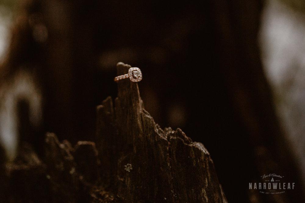 minnesota-hiking-engagement-photos-Narrowleaf_Love_and_Adventure_Photographer-9691.jpg