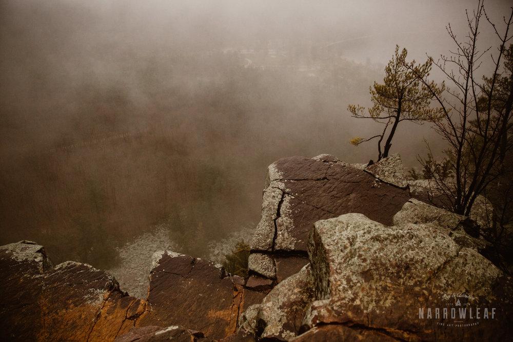 foggy-hiking-engagement-photos-devils-lake-state-park-Narrowleaf_Love_and_Adventure_Photographer-3686.jpg