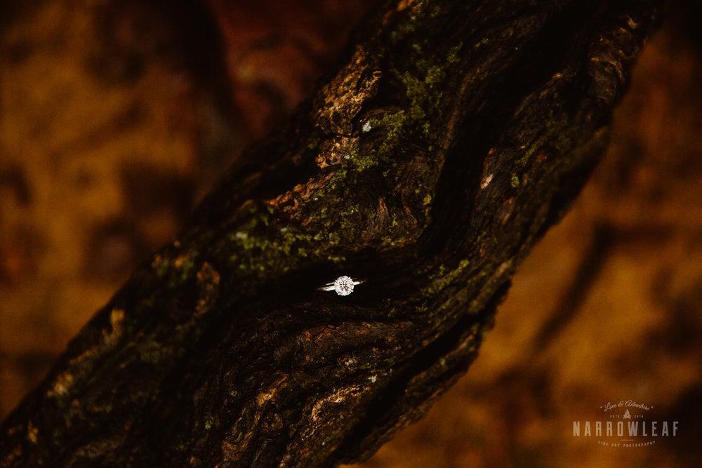 foggy-hiking-engagement-photos-Narrowleaf_Love_and_Adventure_Photographer-3046.jpg