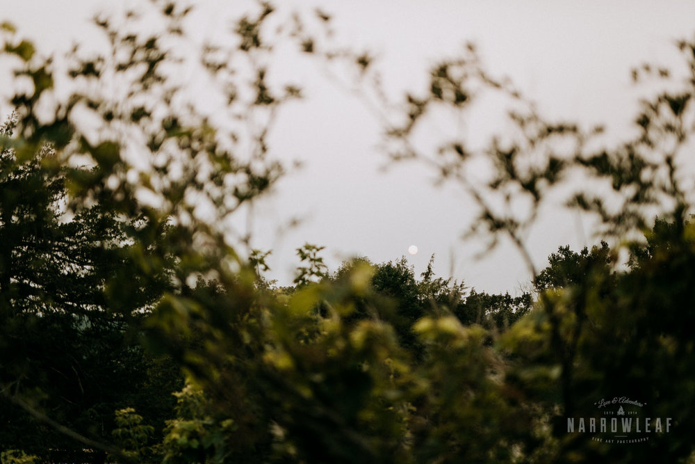 wisconsin-wedding-photographer-Narrowleaf_Love_and_Adventure_Photography-3931.jpg