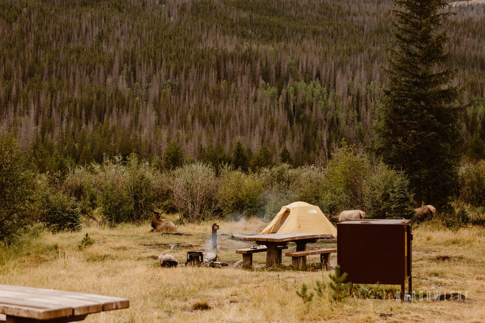 colorado-adventure-photographer-camping-rocky-mountains-Narrowleaf_Love_and_Adventure_Photography-4128.jpg
