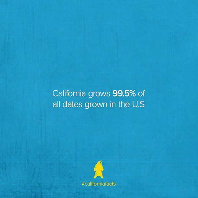 Every 950/1000 dates in the country are from California! #californiafacts • #californiastats #californiastatistics #californiarevival #californiadreamin #prophesycalifornia #rp2018 #reformerspledge #reformerspledge2018 #cadreamin #california #ilovecalifornia #cali #gocalifornia #califacts #themoreyouknow #stats #ilovecalifornia #loveyourcity #loveyourstate