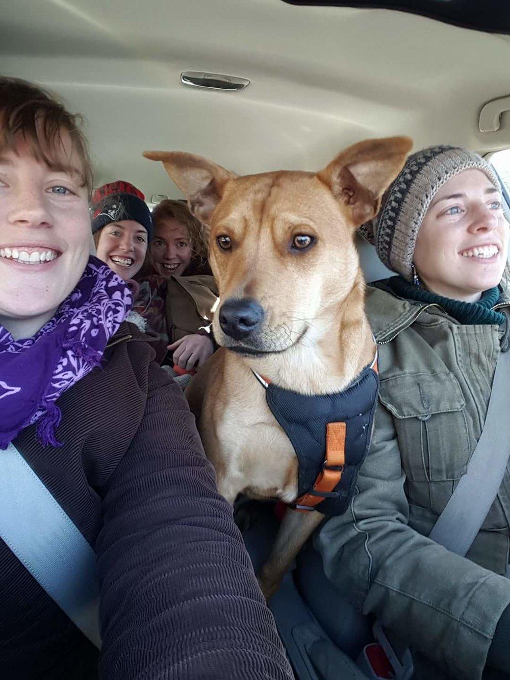 Green Sisters en route