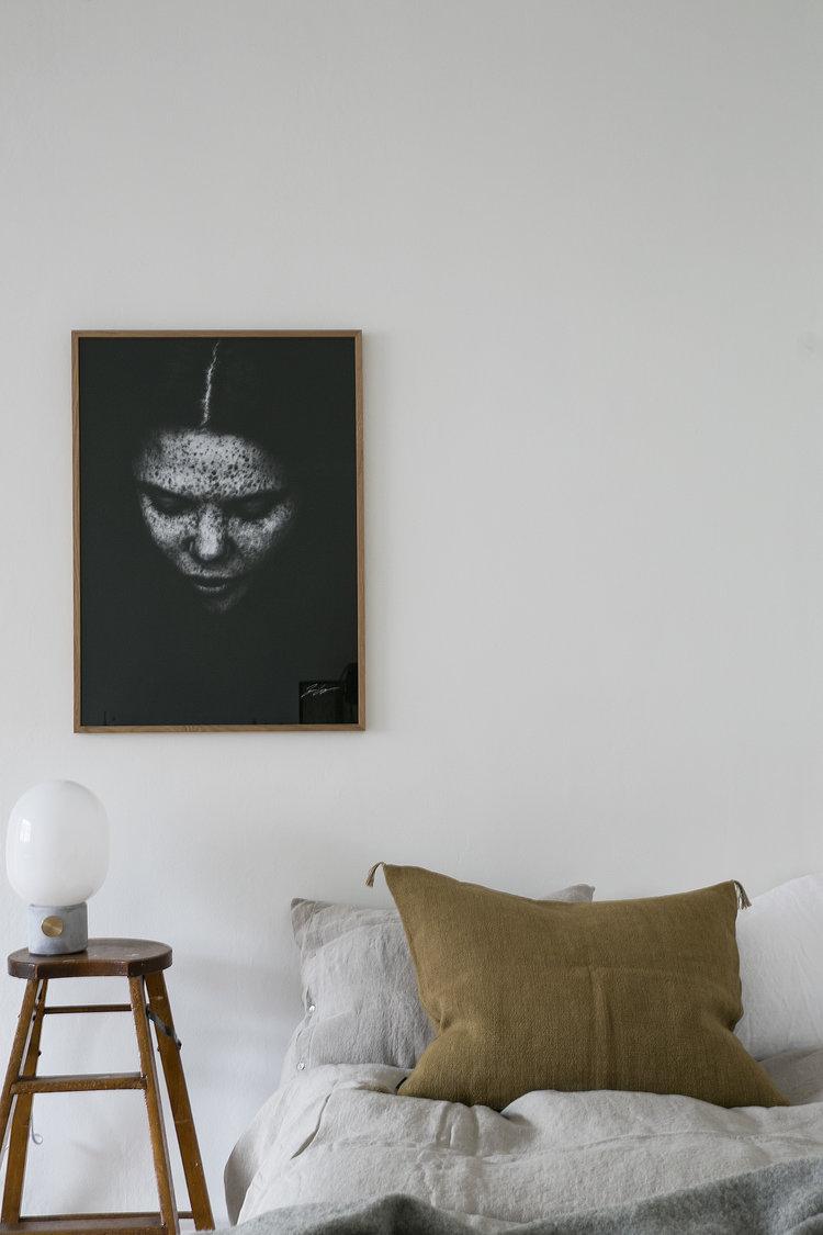 Fantastic Frank - Ulrika Nihlén