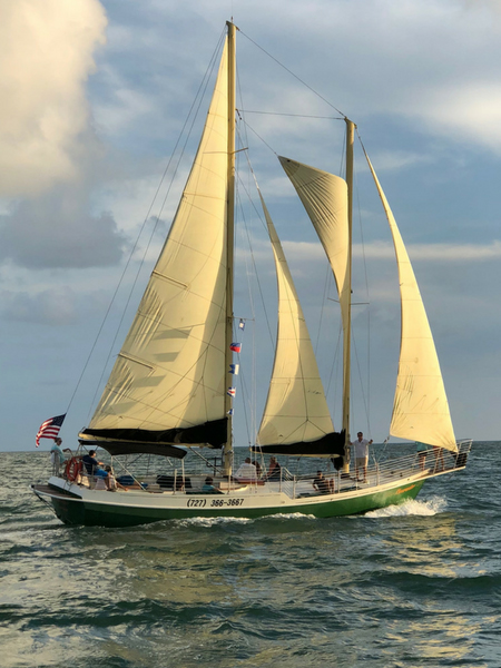 Clearwater-sailing-charter.jpg