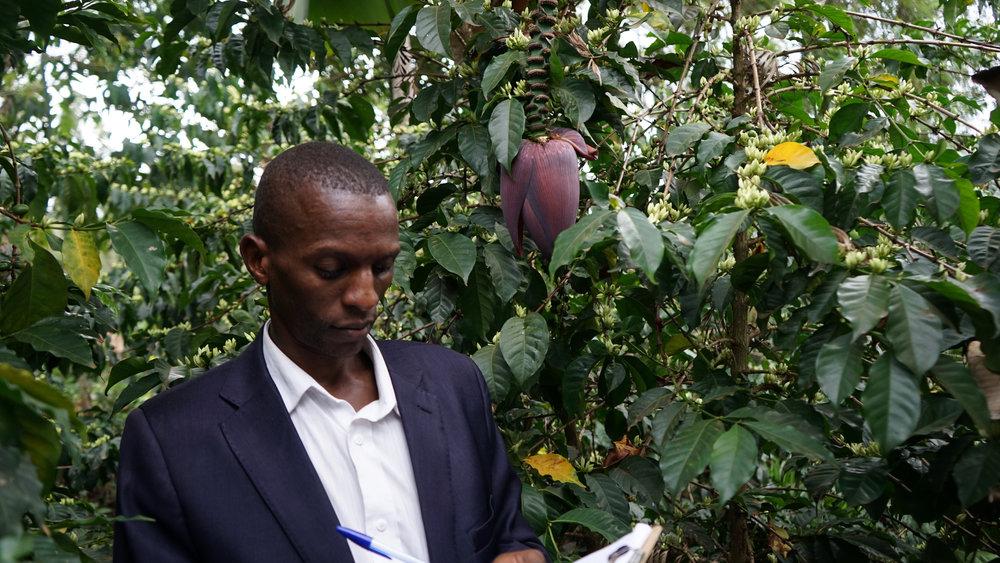 Kenya Meru Kamaara_PB.jpg