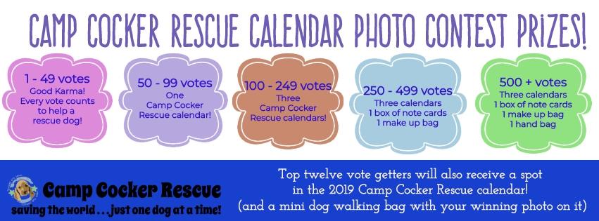 Calendar contest prizes.jpg