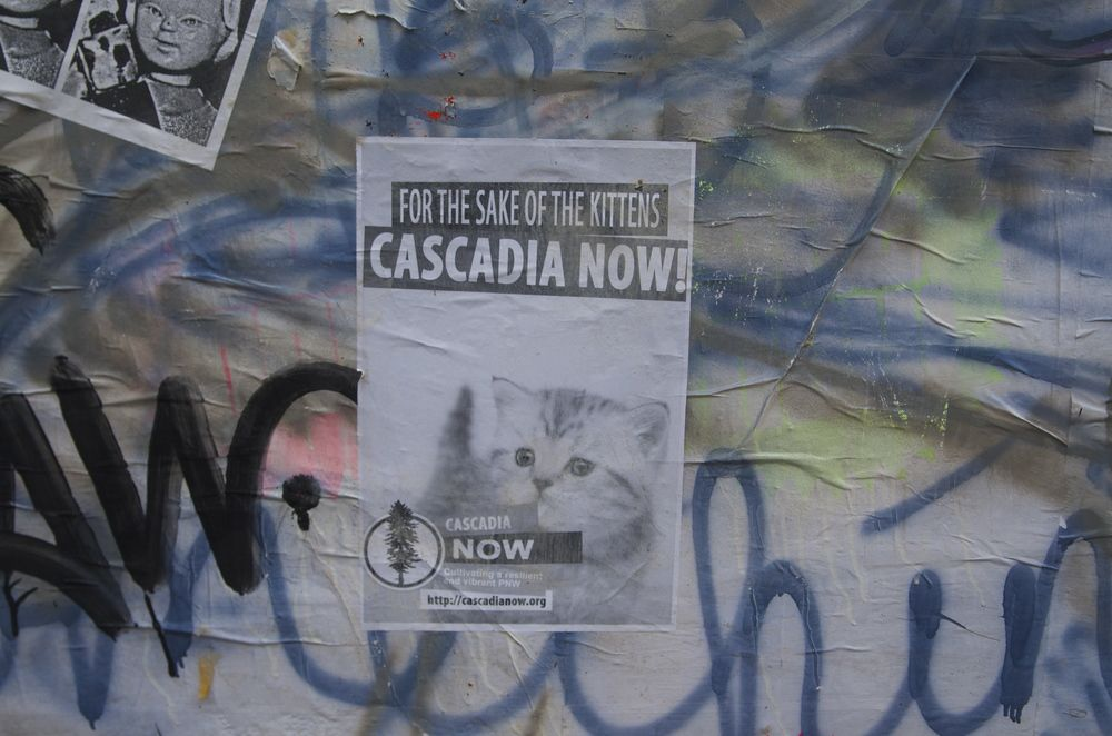 For the Sake of the Kittens Cascadia Now Street Art Graffiti.jpg