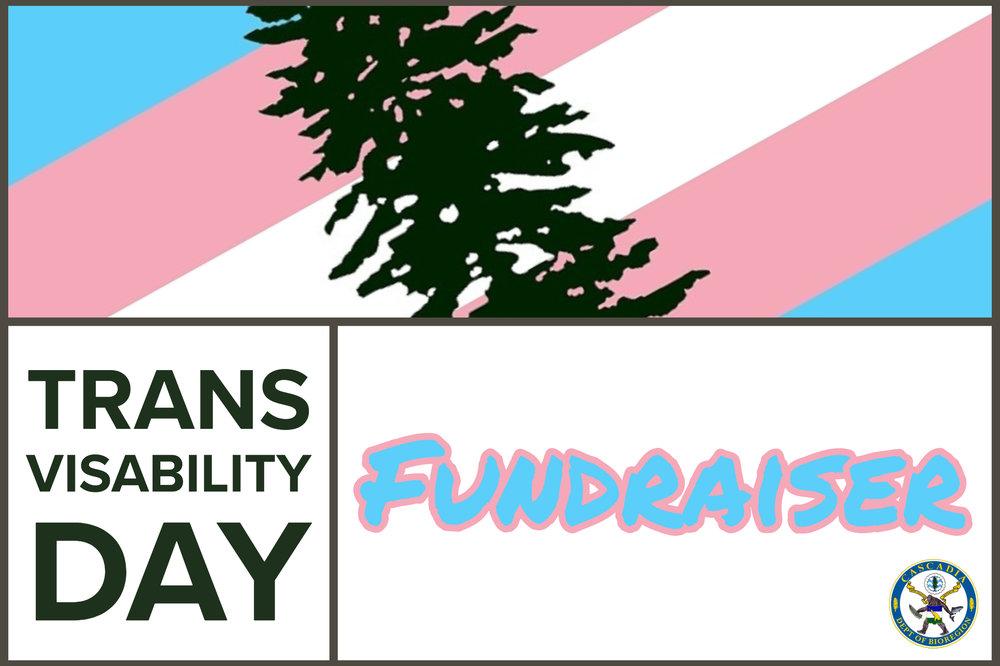 Trans Rights Header.jpg