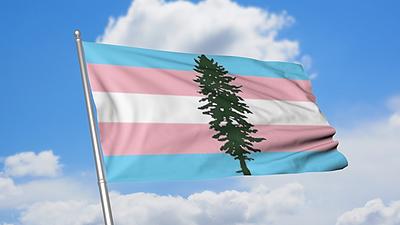 Cascadia Trans Flag.jpg