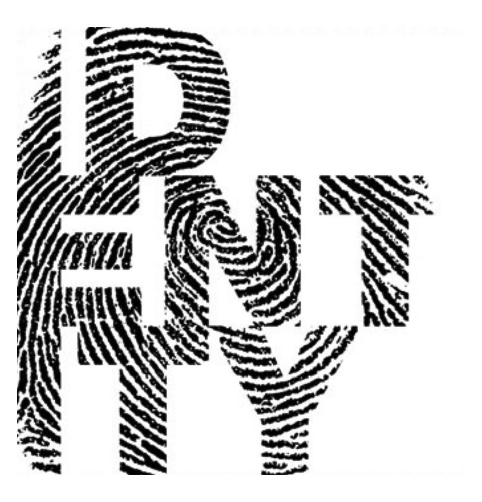 identity copy.jpg