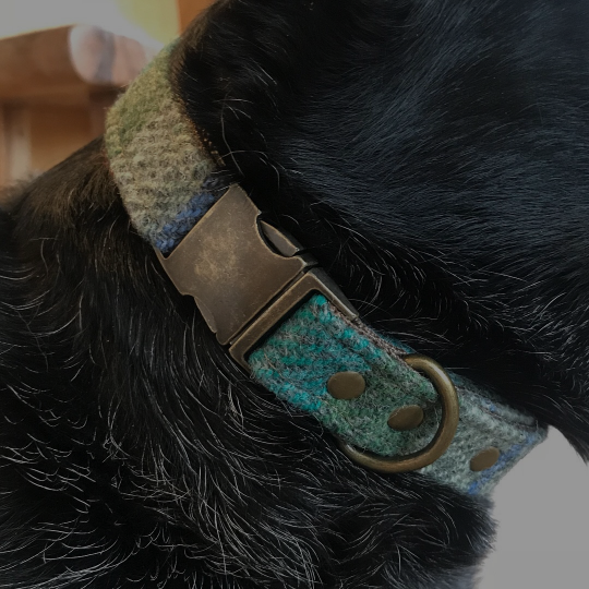 TRULY UNIQUECOLLARS & LEASHES - All Luni & Roo fabrics and hardware are hand-selected for style, quality, and a one-of-a-kind look that both you and your pup will enjoy