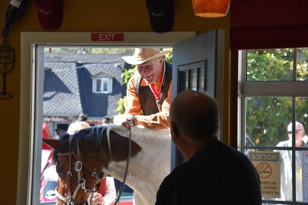Tracy horse.jpg