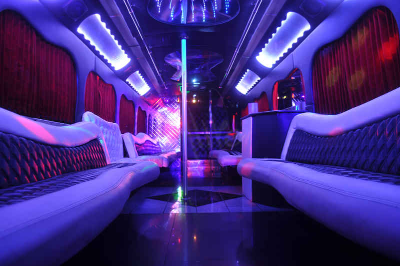 Alive Party Bus 47 Passenger