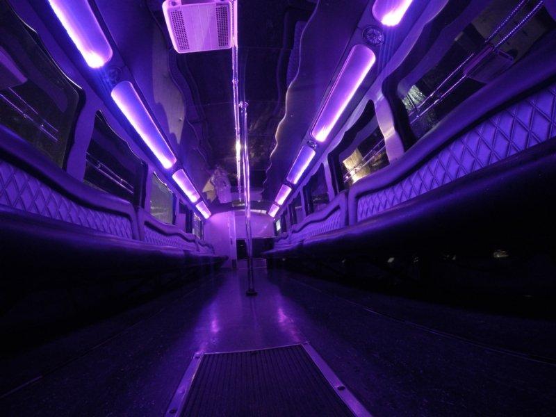 Mirrored Long Shot of 47 Passenger SD Party Bus.jpg