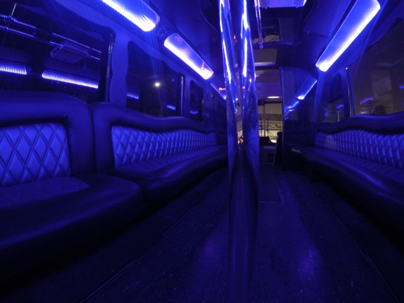 Behide Pole in 47 Passenger Party Bus.jpg