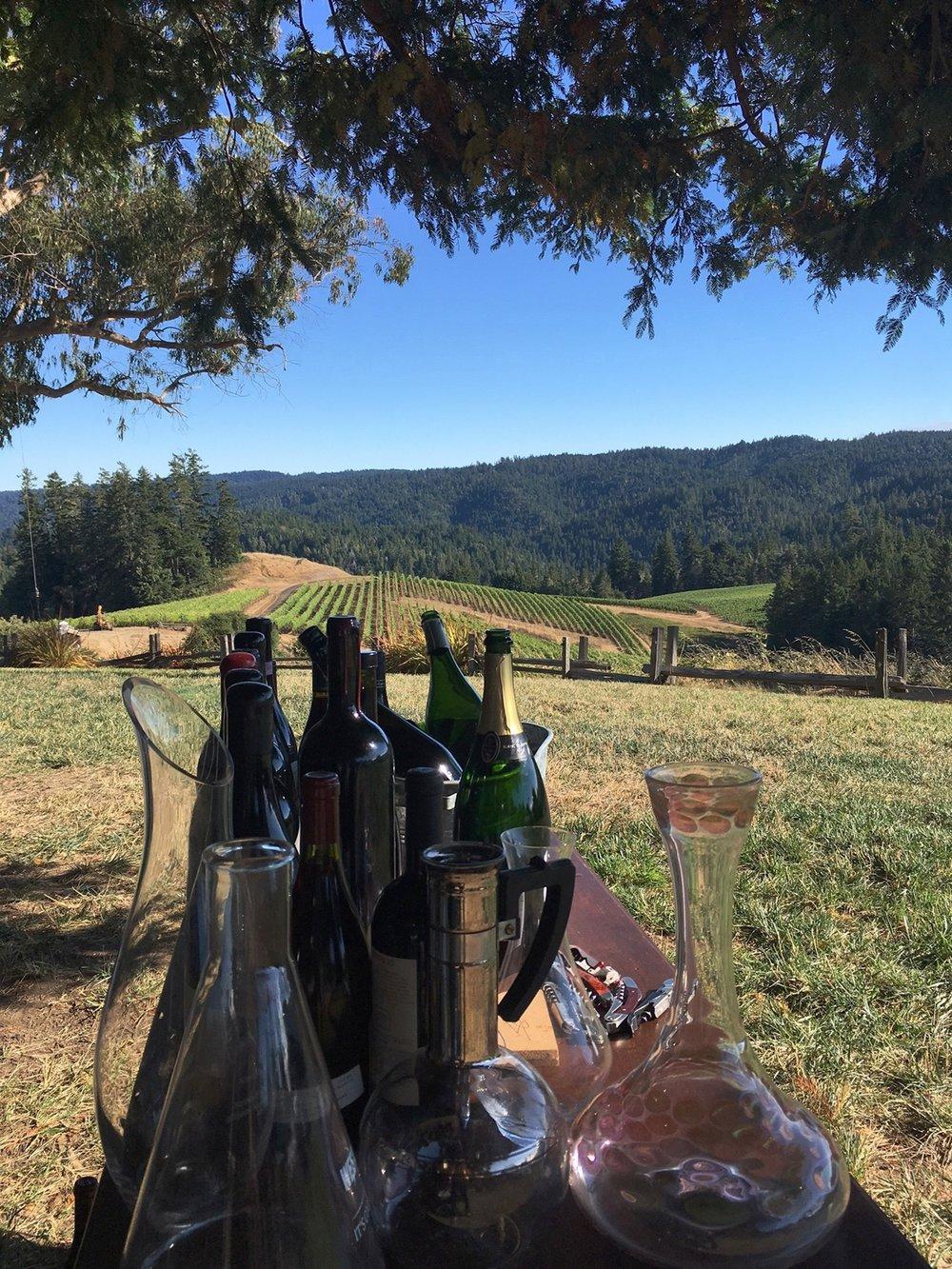 Napa-Vineyard-Wine_Tasting.JPG