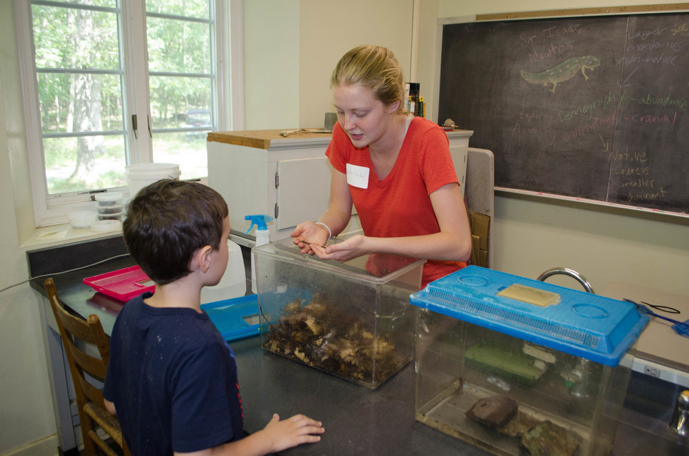 Sarah teaching about salamanders at an MLBS open house event