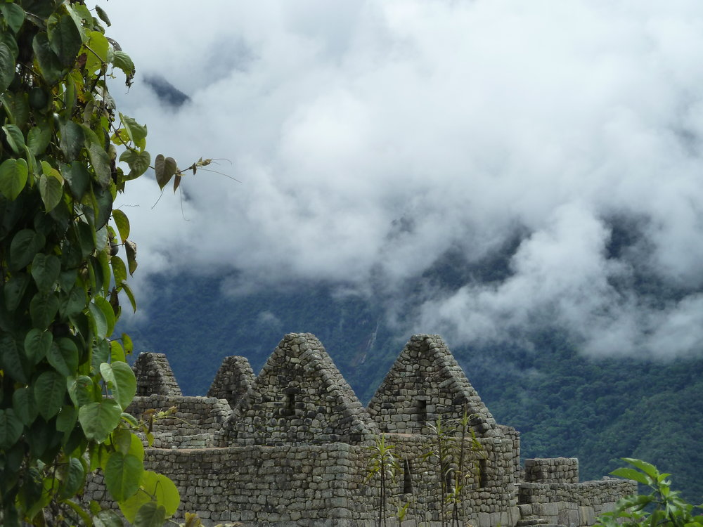 One of my first views of Machu Picchu